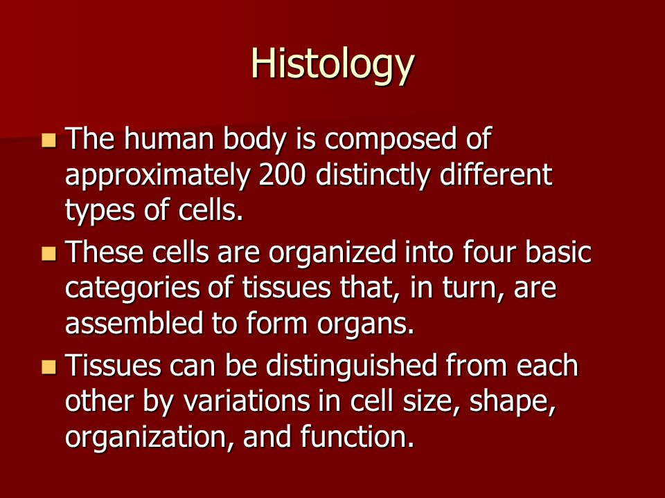 an introduction to different types of tissues in a human body Muscle types muscle introduction to the human body human beings are an organ is an organization of several different kinds of tissues so arranged that.