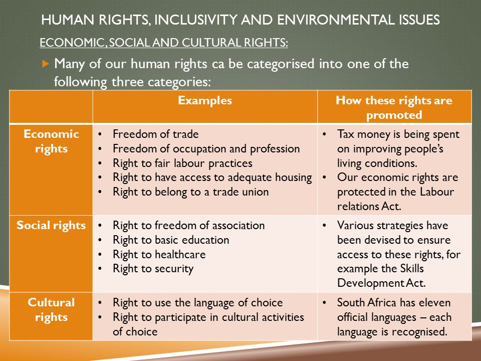 human rights and social skills