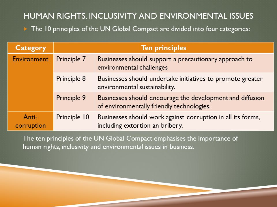 business studies essay on human rights inclusivity and environmental issues Human rights, inclusivity, environmental and social justice: infusing the principles and practices of social and environmental justice and human rights as defined in the constitution of the republic of south africa.