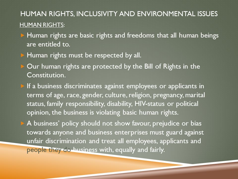 Concept of Corporate Social Responsibility. Human Rights, Inclusivity and Environmental Issues