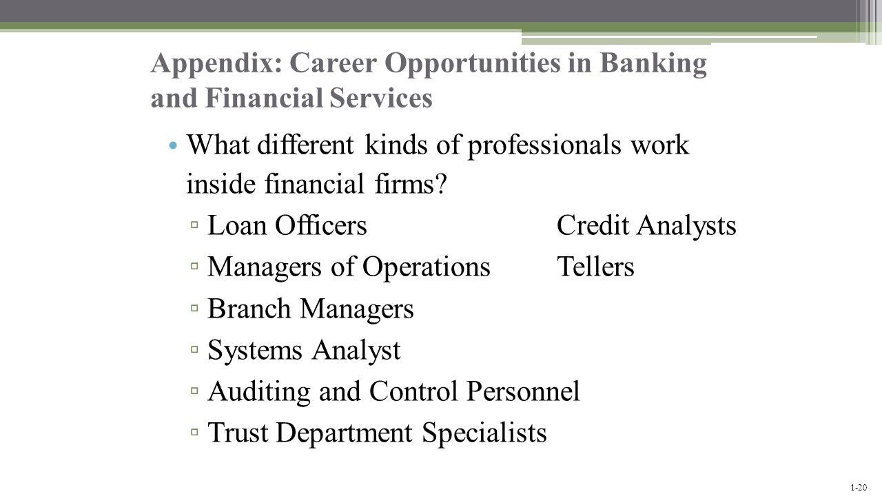 Appendix: Career Opportunities in Banking and Financial Services