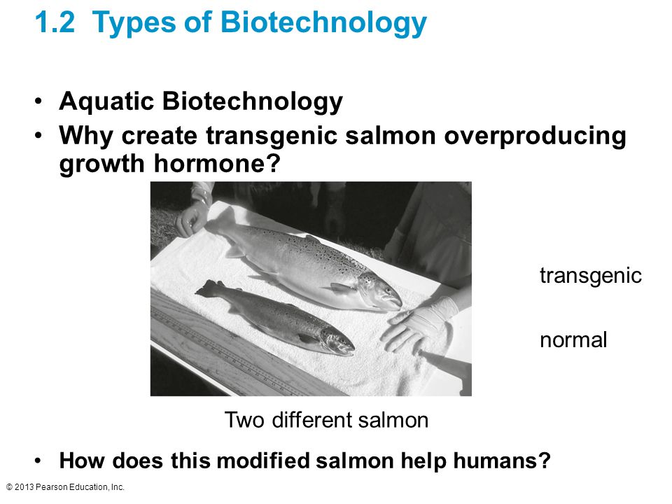 types of biotechnology Biotechnology promises to bring important changes in plant as well as livestock production in both fields cloning and sex determination of embryos have been developed for different types of livestock for example, cattle.