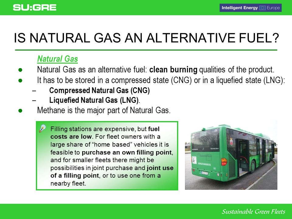 alternative fuel vehicles feasibility study 2 essay Alternative medicine essay alternative fuels: cars can exhale water genetic engineering alternative fuel vehicles feasibility study.