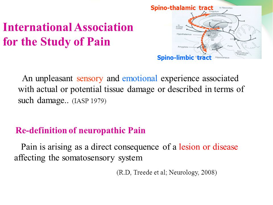 International Association for the Study of Pain (IASP ...