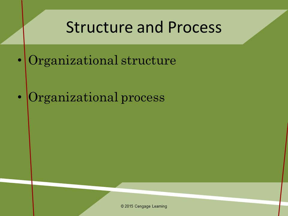 Chapter 9 Designing Adaptive Organizations ppt download