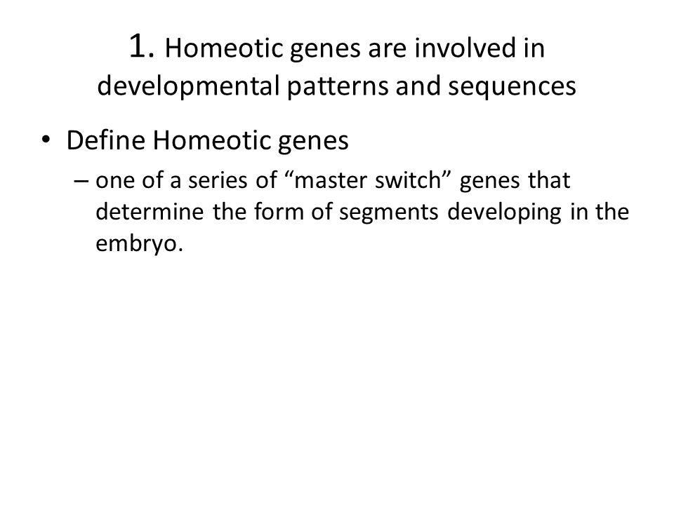 1. Homeotic genes are involved in developmental patterns and sequences