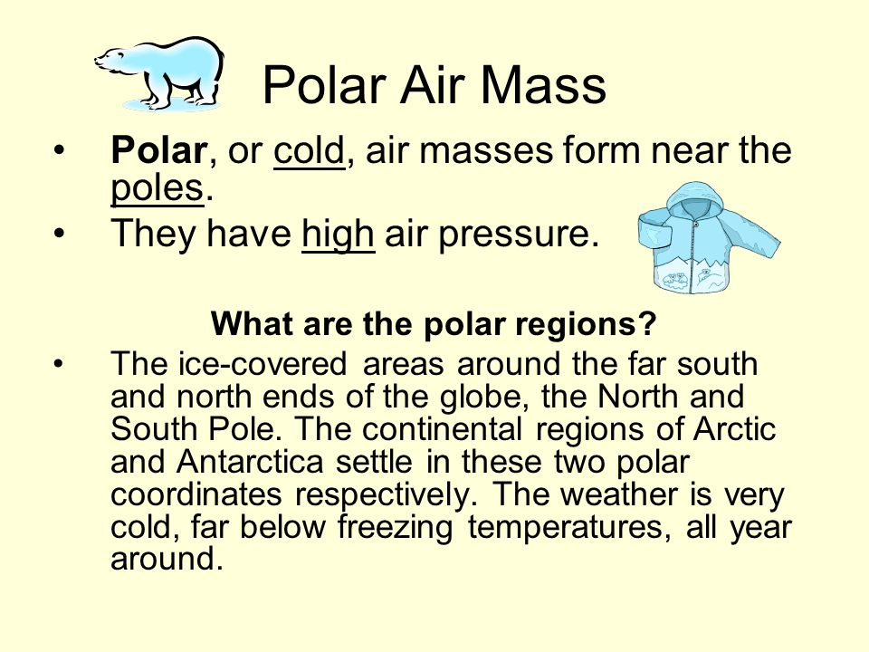 What are the polar regions