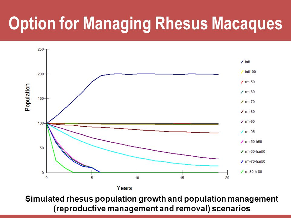 Option for Managing Rhesus Macaques