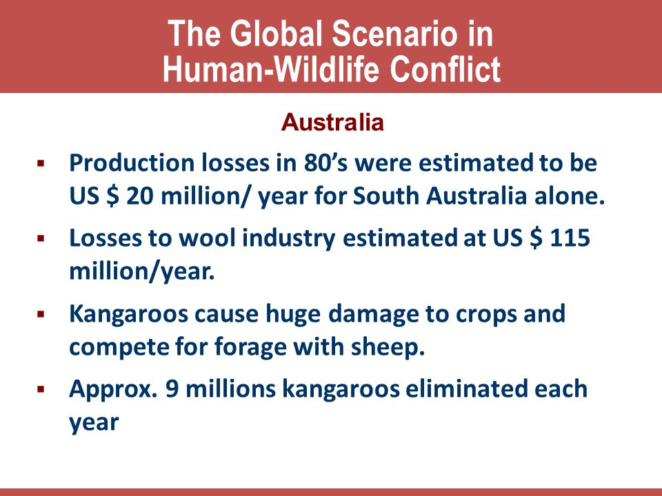 The Global Scenario in Human-Wildlife Conflict