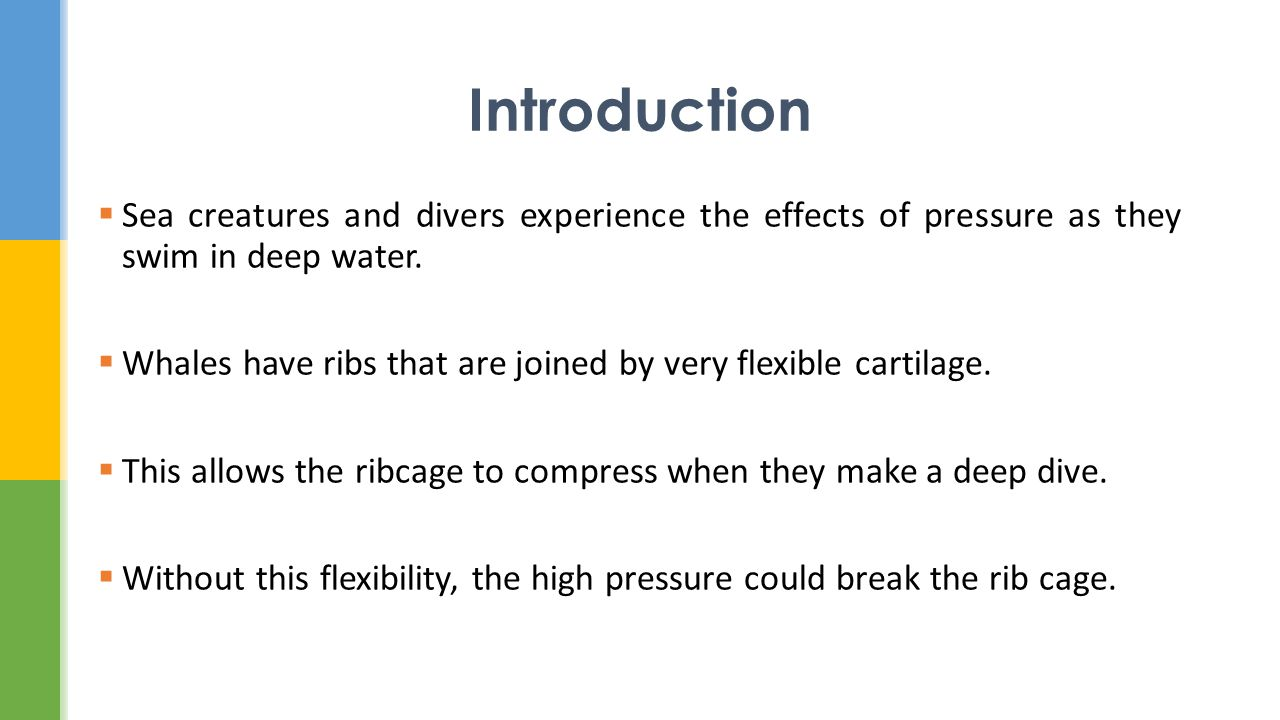 severe effects of deep diving in the water How does pressure effect if you are just diving in water how do scuba divers protect themselves from the damaging effects of pressure while deep sea diving.
