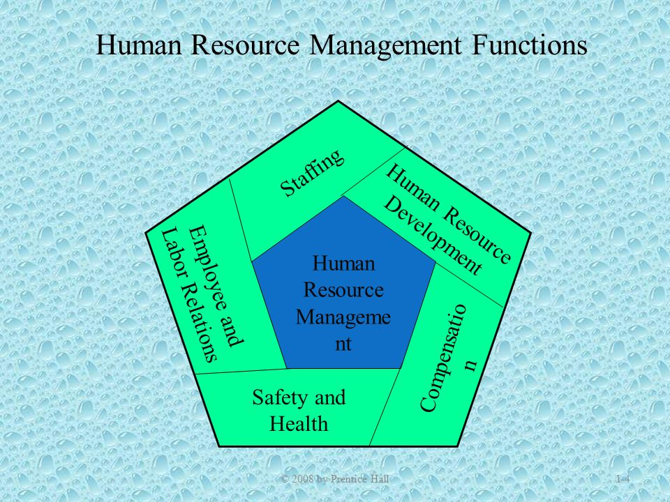 hrm and staffing function Staffing includes strategic human resource planning to determine what the human resource needs are to fulfill the organization's mission job analysis, to specify the essential knowledge,  explain the goals of the training and development function of hrm.