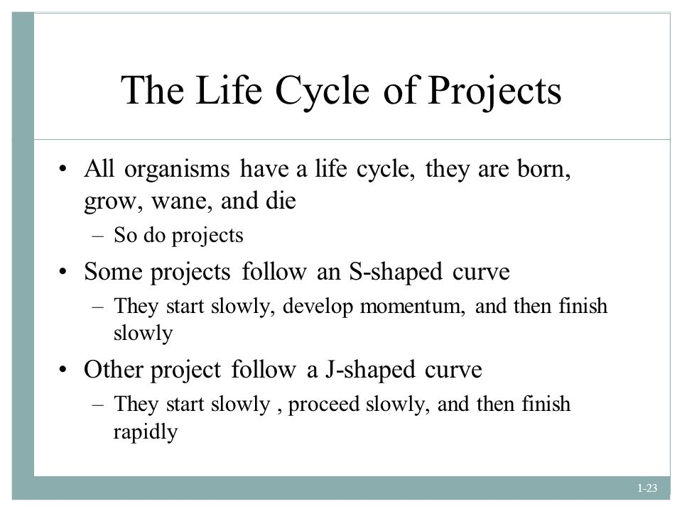 The Life Cycle of Projects