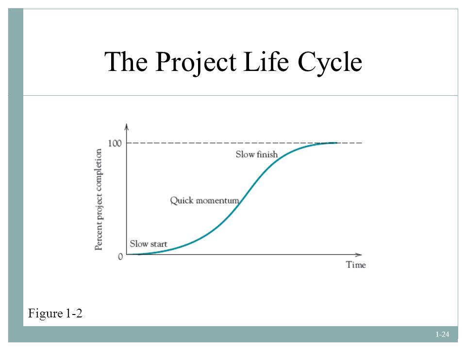 The Project Life Cycle Figure 1-2