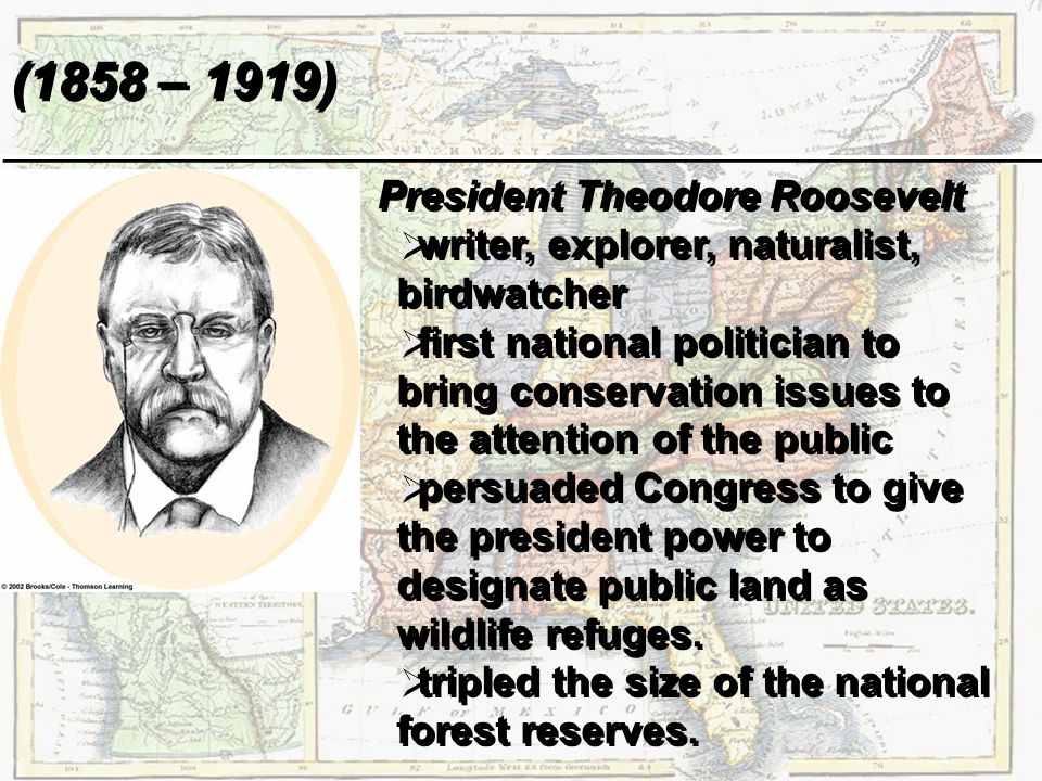 president theodore roosevelt the power of the With the assassination of president mckinley, theodore roosevelt, not quite 43, became the youngest president in the nation's history he brought new excitement and power to the presidency, as.