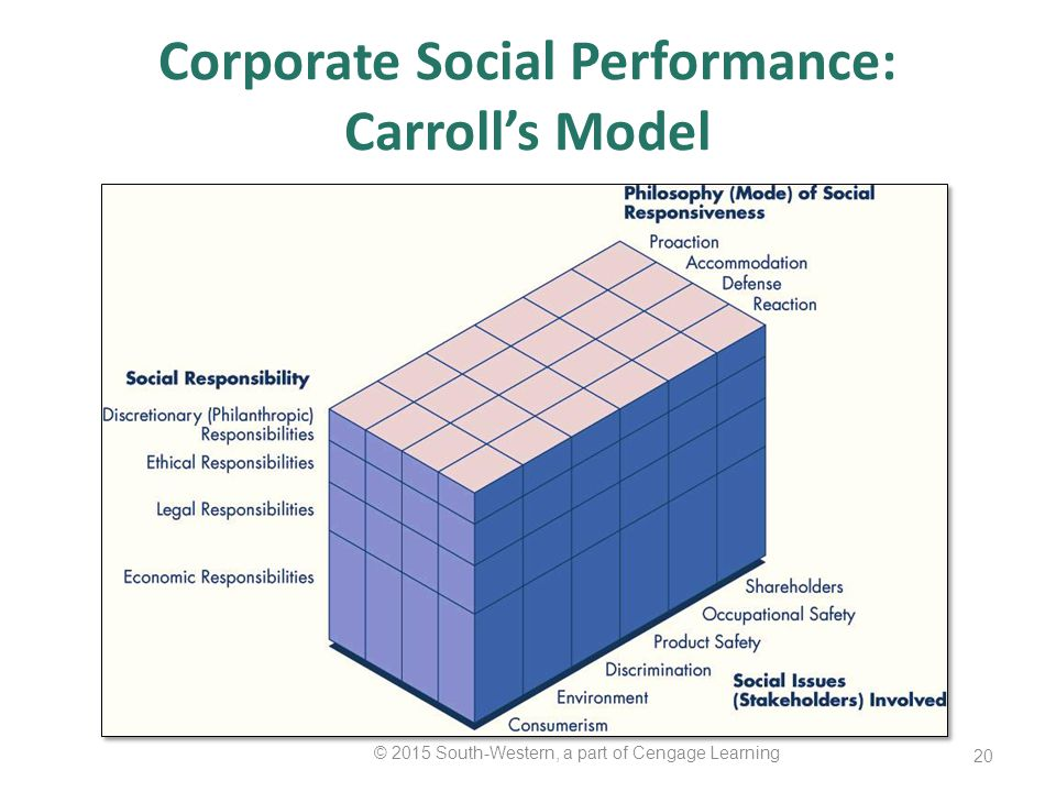 corporate social responsibility and carroll