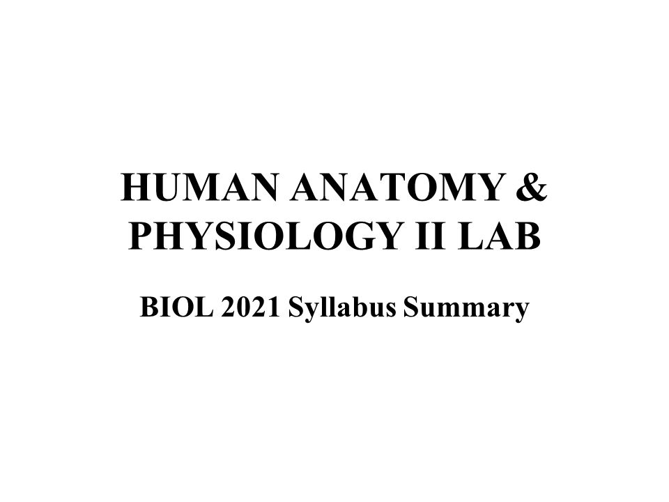 HUMAN ANATOMY & PHYSIOLOGY II LAB - ppt video online download