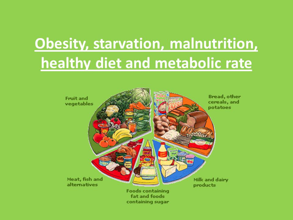 Obesity, starvation, malnutrition, healthy diet and metabolic rate