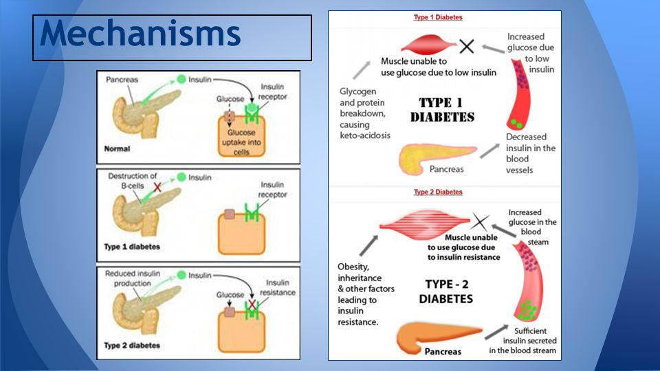 type i and type ii diabetes