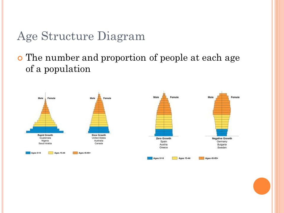 Chapter 51 Population Ecology. - ppt download