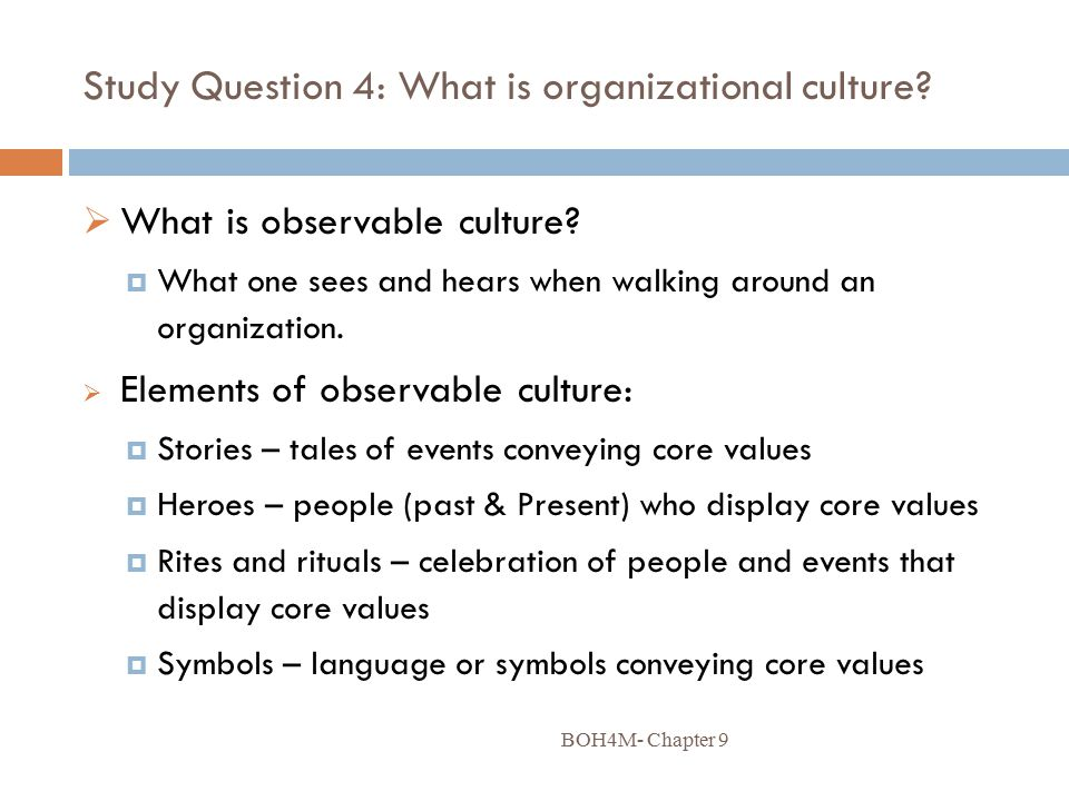 organizational culture case study questions Case studies: google 1 create a full‐engagement culture that defines the organization and drives pose questions directly to larry or sergey.