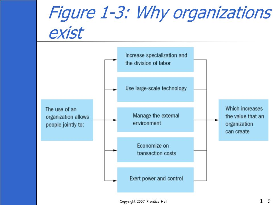 Figure 1-3: Why organizations exist