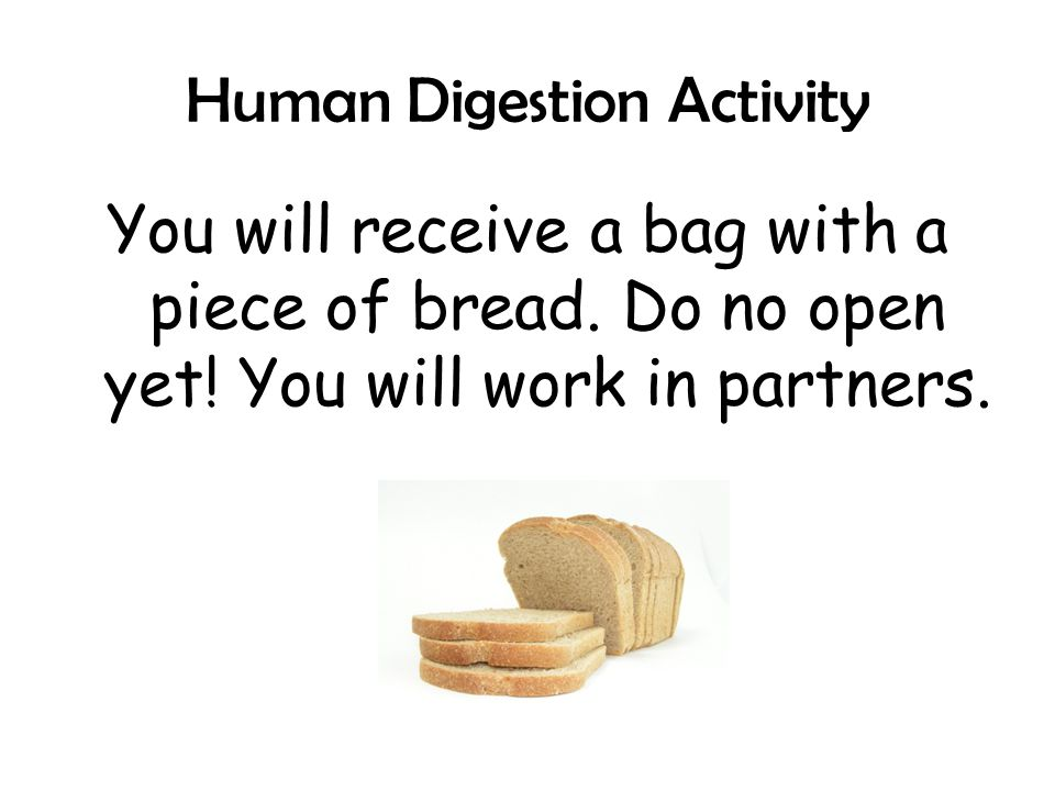 the life of bread human digestive What i want to know is whether amino acids produced from human  which  brings me back to the possibility that human hair may be used in bread  the food scientists are adding to food to ensure longer shelf life for higher profit   containing dairy ingredients causes severe digestive upset and pain.