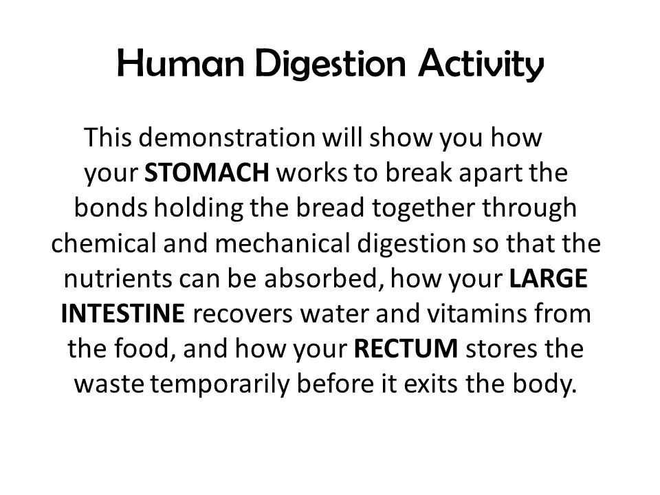 human digestion activity • activity 2: the digestive system and digestion 111 expected learning outcomes at the end of this lab, you will be able to • list the essential.