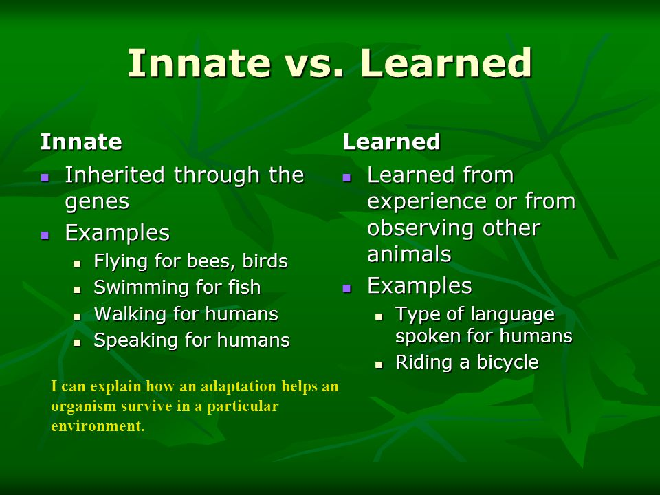 innate learned behaviour While some regarded aggression as a biological and innate phenomenon, others  held it to be a pliable behaviour learnt through environmental.
