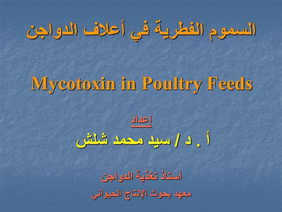 السموم الفطرية في أعلاف الدواجن Mycotoxin in Poultry Feeds