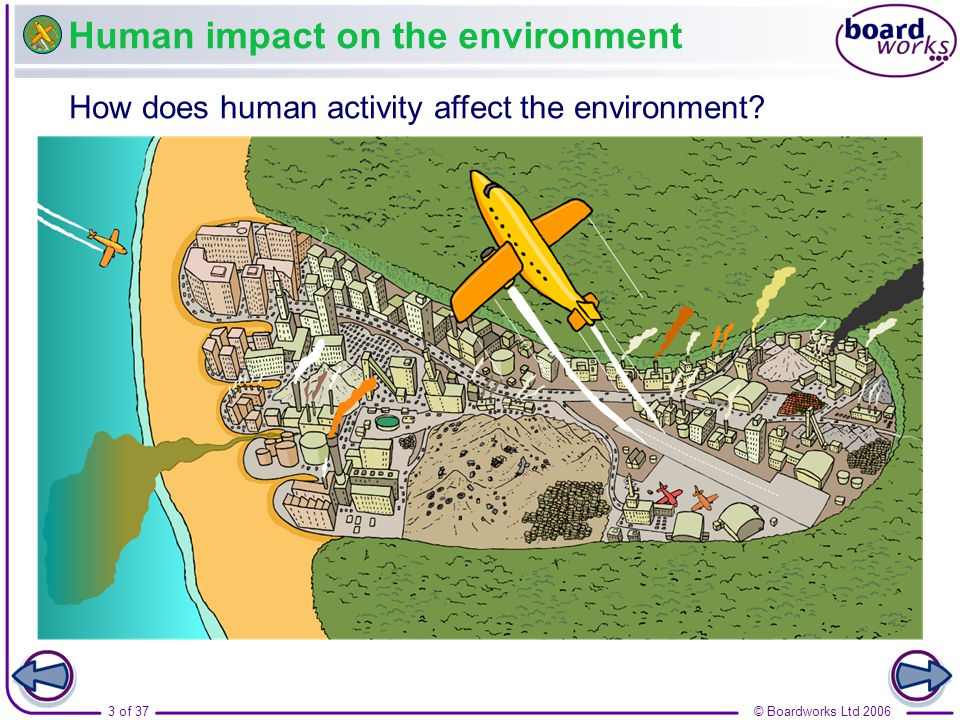 activities affecting the environment Legal factors affecting a business the social environment consists of the sum total of a society's beliefs , activities.