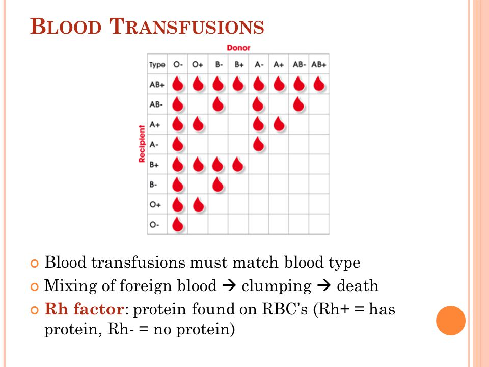 Blood Groups Types Explained - Blood Group Diet Blood Group Matching