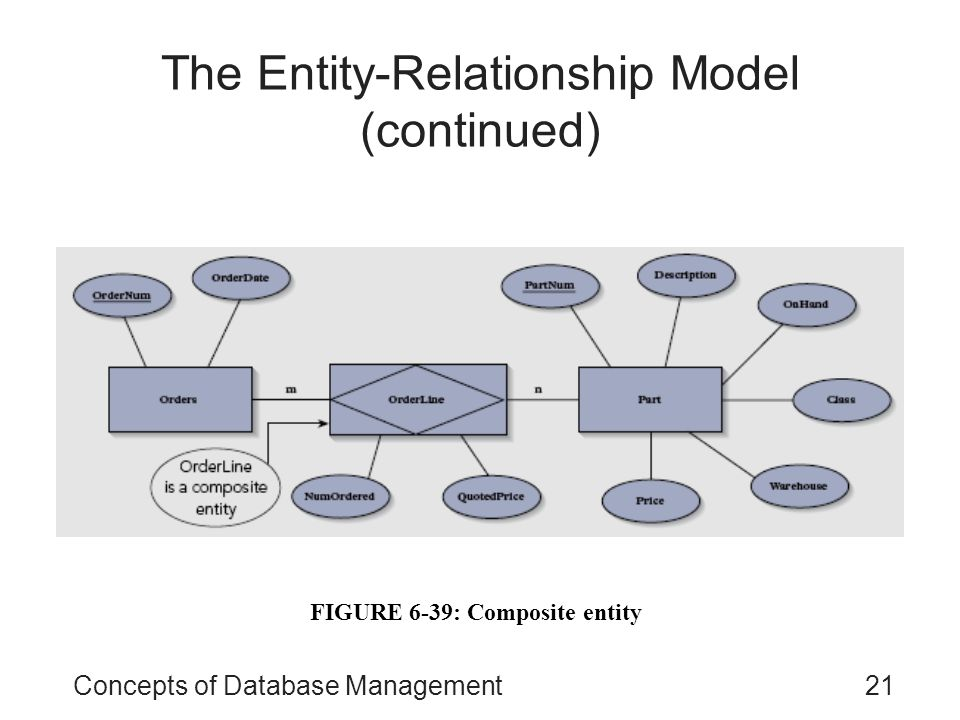 The Entity-Relationship Model (continued)