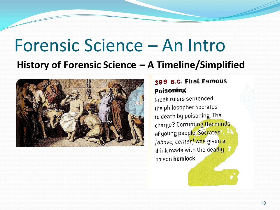 an introduction to the history of computer science Computer science courses offered at american university  introduction to  mathematical subjects required in computer science, such as graphs,   intelligence programming, computer graphics, the history of computing, and  neural networks.