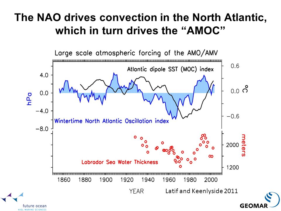 The NAO drives convection in the North Atlantic, which in turn drives the AMOC