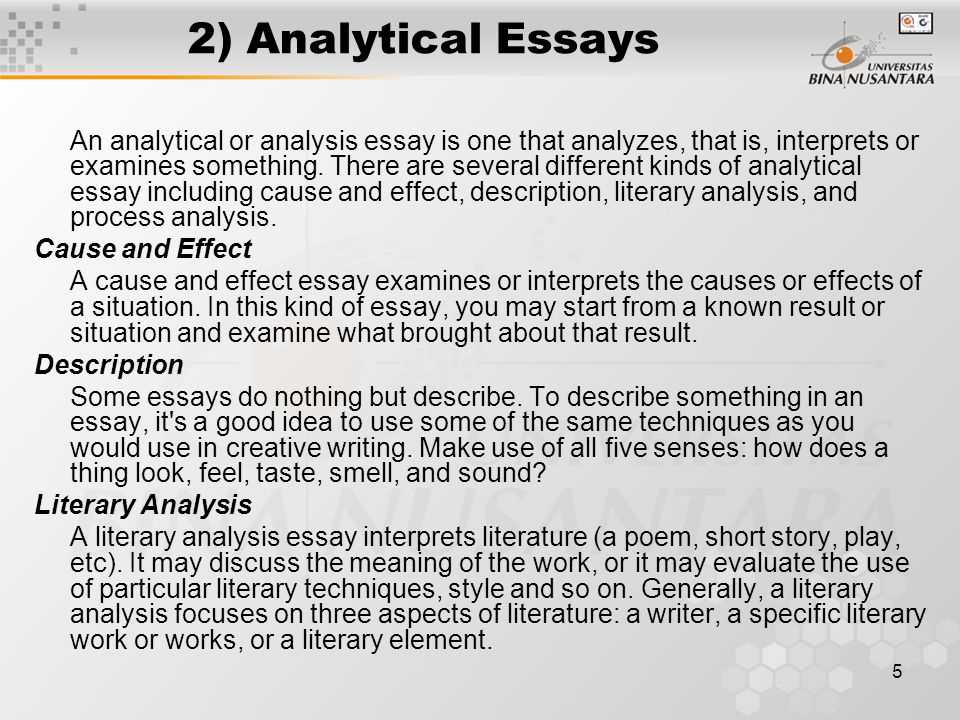 Persuasive Essay Topics High School Essay On Domestic Violence Against Womenjpg Environmental Health Essay also Family Business Essay Essay On Domestic Violence Against Women Berlin Haushoch Magazin What Is A Synthesis Essay