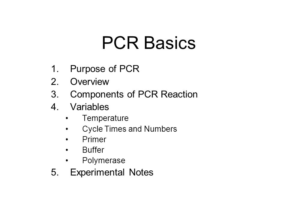 PCR Basics Purpose of PCR Overview Components of PCR Reaction