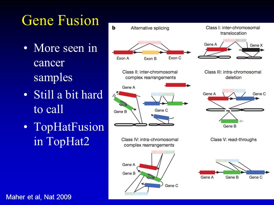 Gene Fusion More seen in cancer samples Still a bit hard to call