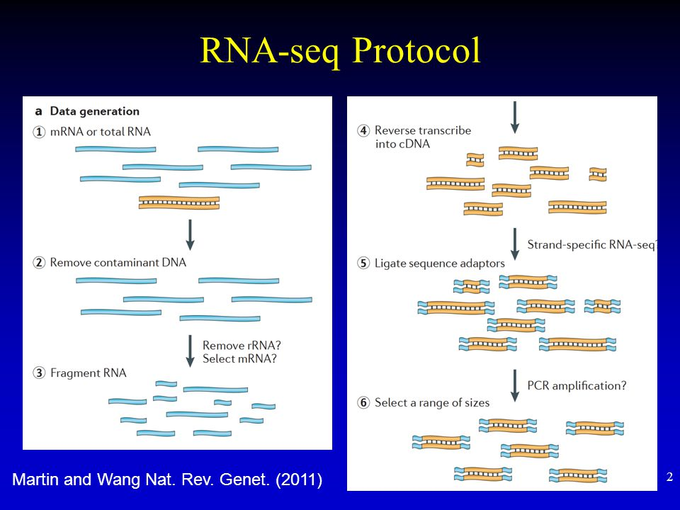 RNA-seq Protocol Martin and Wang Nat. Rev. Genet. (2011)