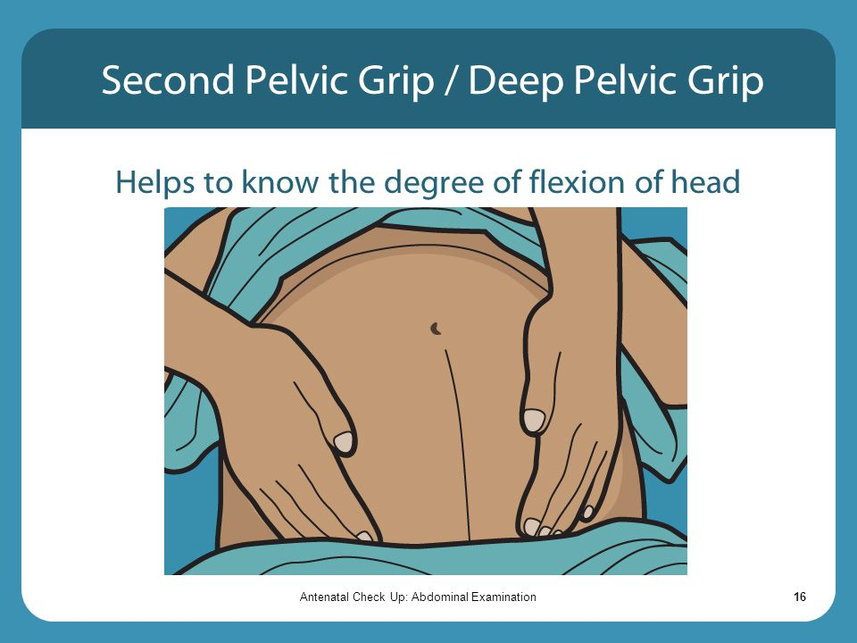 Second Pelvic Grip / Deep Pelvic Grip