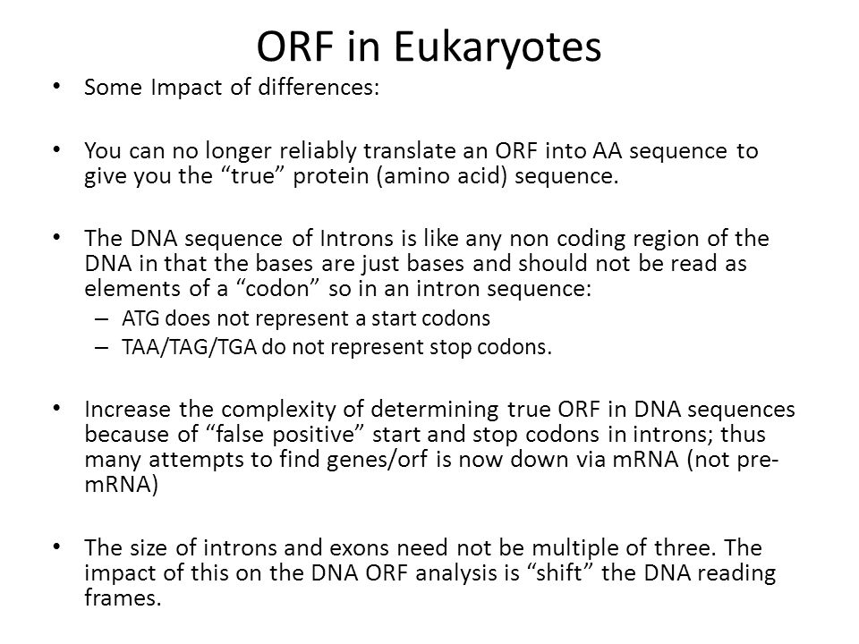 ORF in Eukaryotes Some Impact of differences: