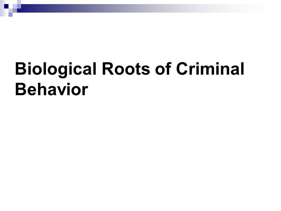 biological criminal Free essay: biological criminal behavior and angela yates ceretha butler, angela de libero, tameka james, sam price, michael palazuelos cja/314 5/20/2013.