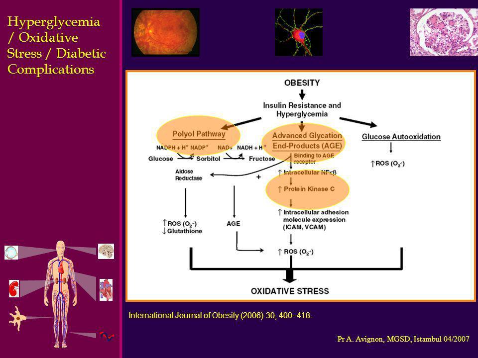 Hyperglycemia / Oxidative Stress / Diabetic Complications