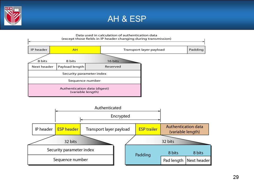 AH & ESP