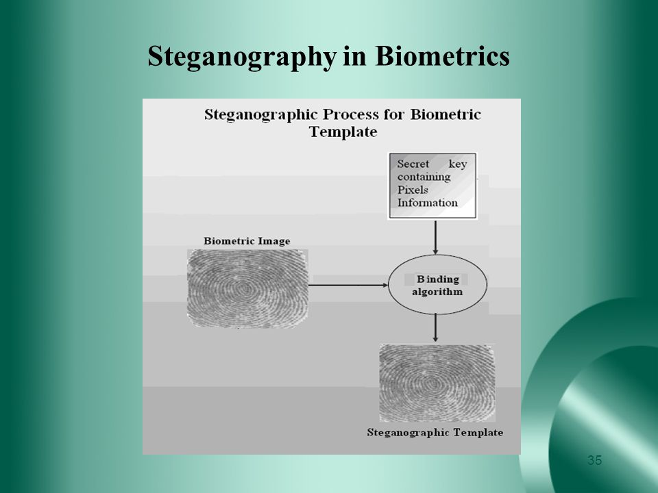 Steganography in Biometrics