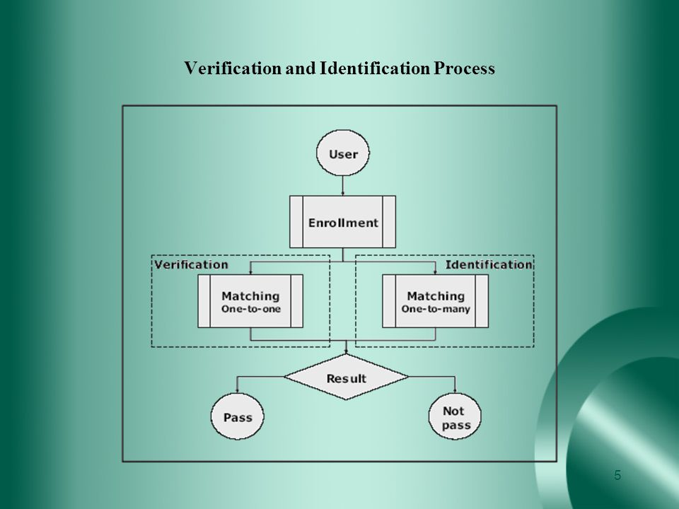 Verification and Identification Process