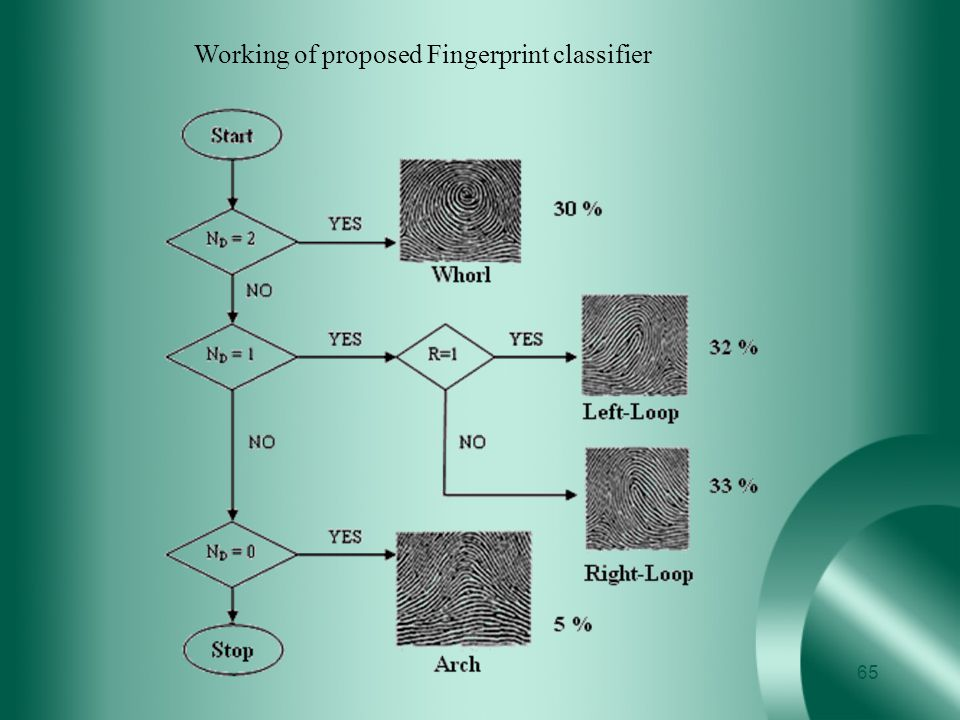 Working of proposed Fingerprint classifier