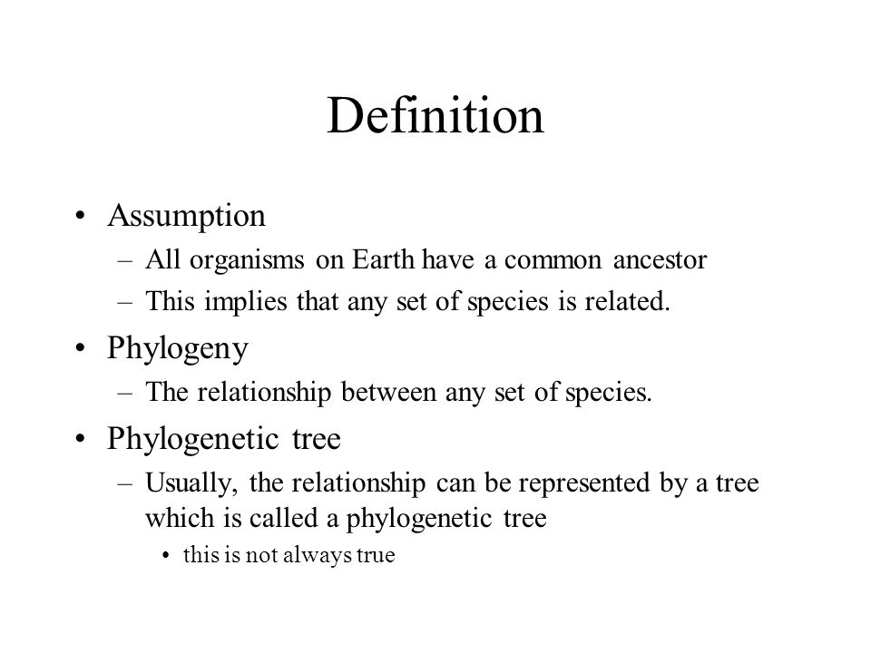 Phylogeny definition and assumptions ppt video online What is the meaning of tree