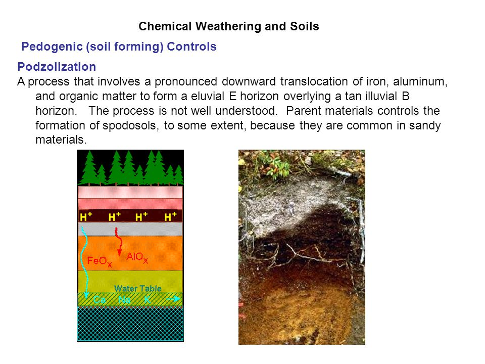 Chemical Weathering and Soils - ppt video online download