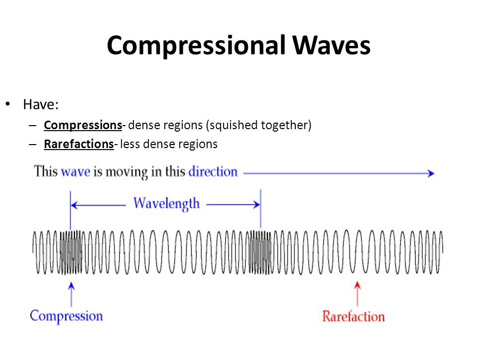 Compressional Waves Have: