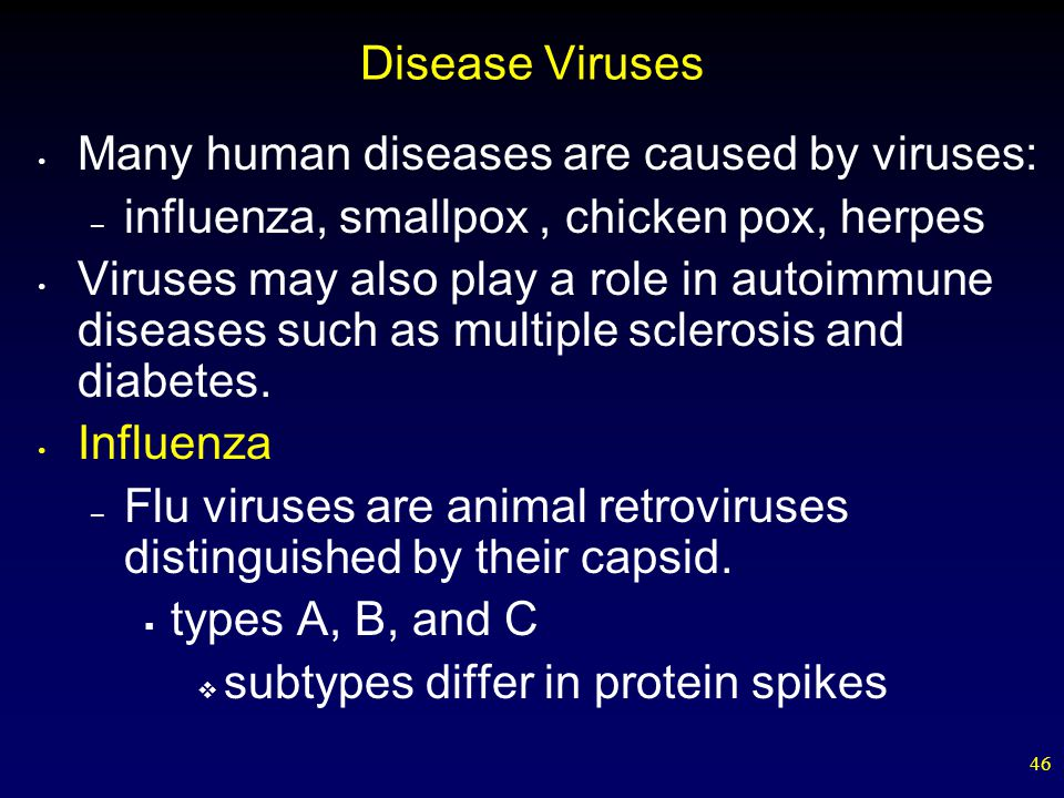 Viruses Chapter ppt video online download